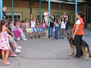 Die Tierarztpraxis Grath bietet auch Services für andere Tierärzte an wie z.B. auf Wunsch Einladungsbriefe für Vorträge zu erstellen, Bemühungen um Sponsoren und Räume und die Beantragung zur Anerkennung bei der ATF