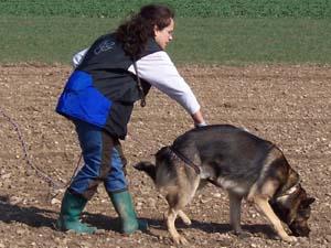 Die Tierarztpraxis Grath bietet auch eine Hundeschule an bei der Sie Ihren Hund ins Hundeinternat schicken können
