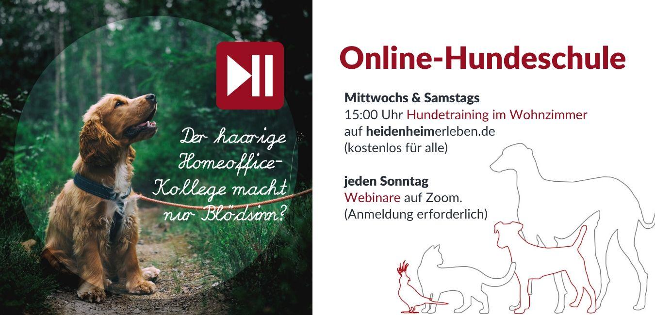 www.kynologe.de/seminare